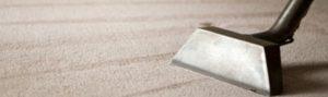 carpet cleaning winter care