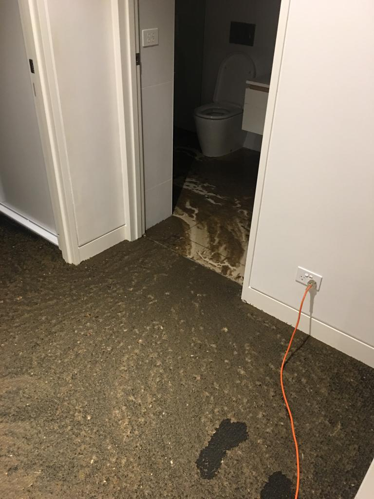 sewage spill due to overflow of a toilet