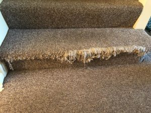 stairs-carpet-repair-before
