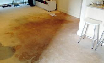 water-damage-before-after-photo