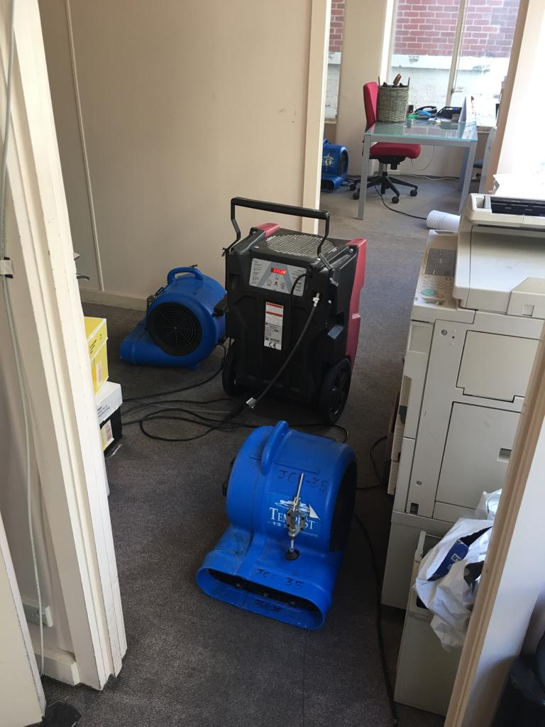air mover and dehumidifer in an office for drying the carpet