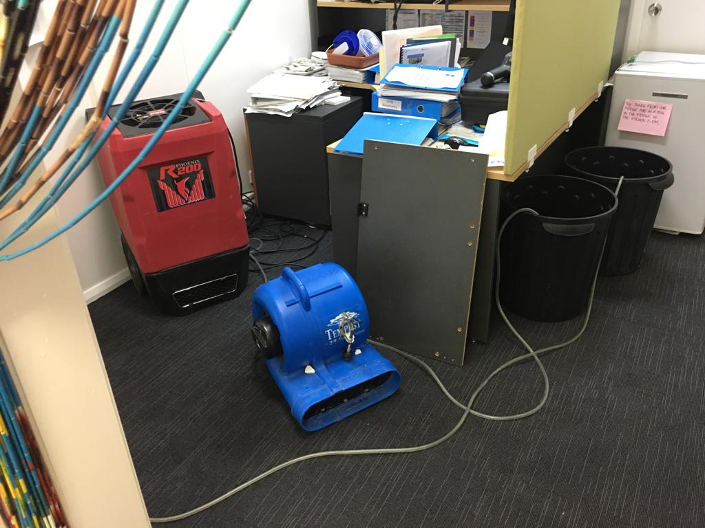 wet carpet cleaning and drying of carpet tiles in the hospital