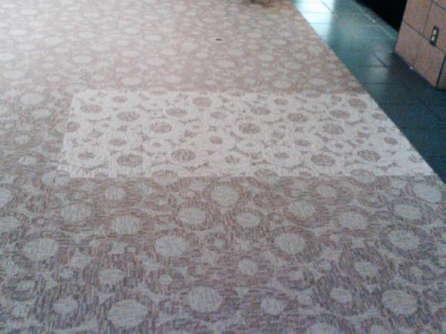 sun damaged carpet